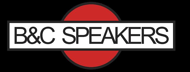 A quanto ammonterebbe un investimento di 1000 euro in B&C Speakers nel 2010?